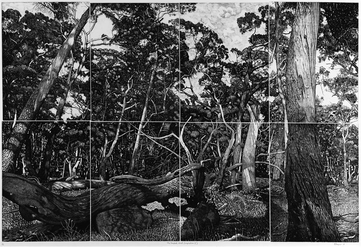 David Frazer, The Tangled Wood (composition I), 2018, etching, 80 x 120 cm, edition 40. Courtesy of the artist and Australian Galleries Melbourne.
